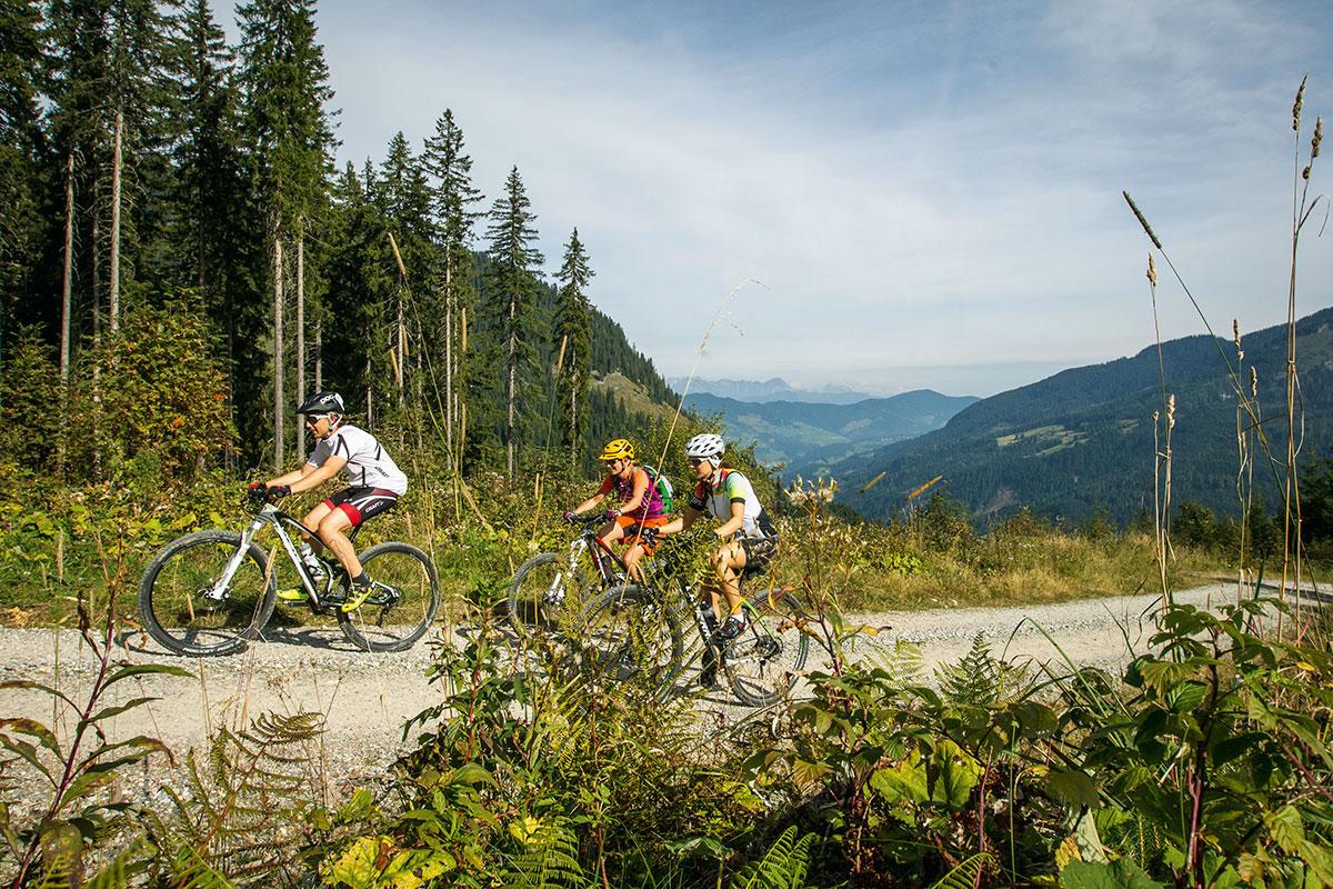 Mountainbiken, Sommerurlaub in Wagrain-Kleinarl